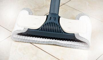 Vaporetto Handy green floor and carpet cleaning